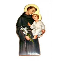 Iman San Antonio de Padua