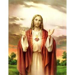 Sgdo. Corazón de Jesús 20x25
