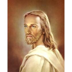 Jesús 20x25