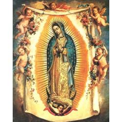 Virgen de Guadalupe 20x25
