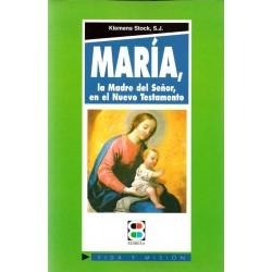Maria la madre del Señor