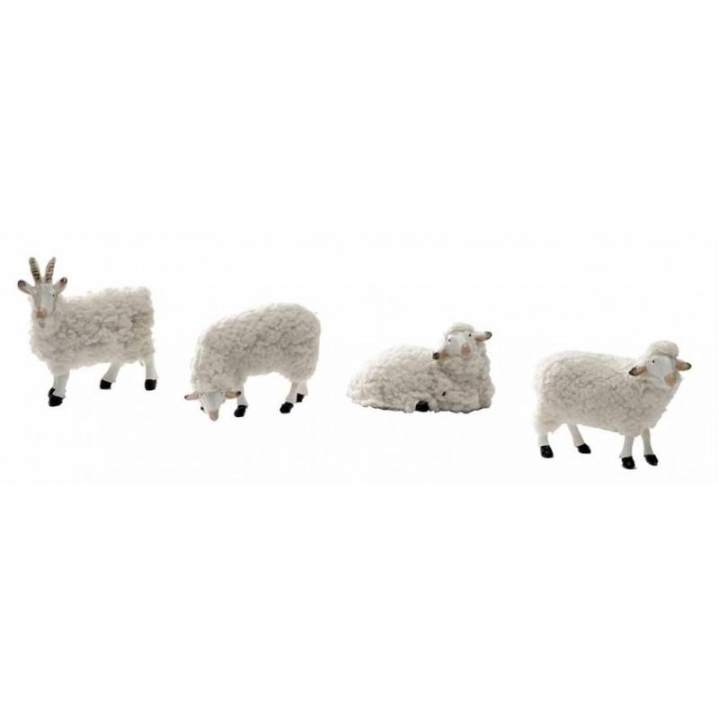 Cordero y cabra