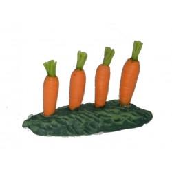 Zanahoria