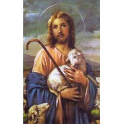 El Buen Pastor 2