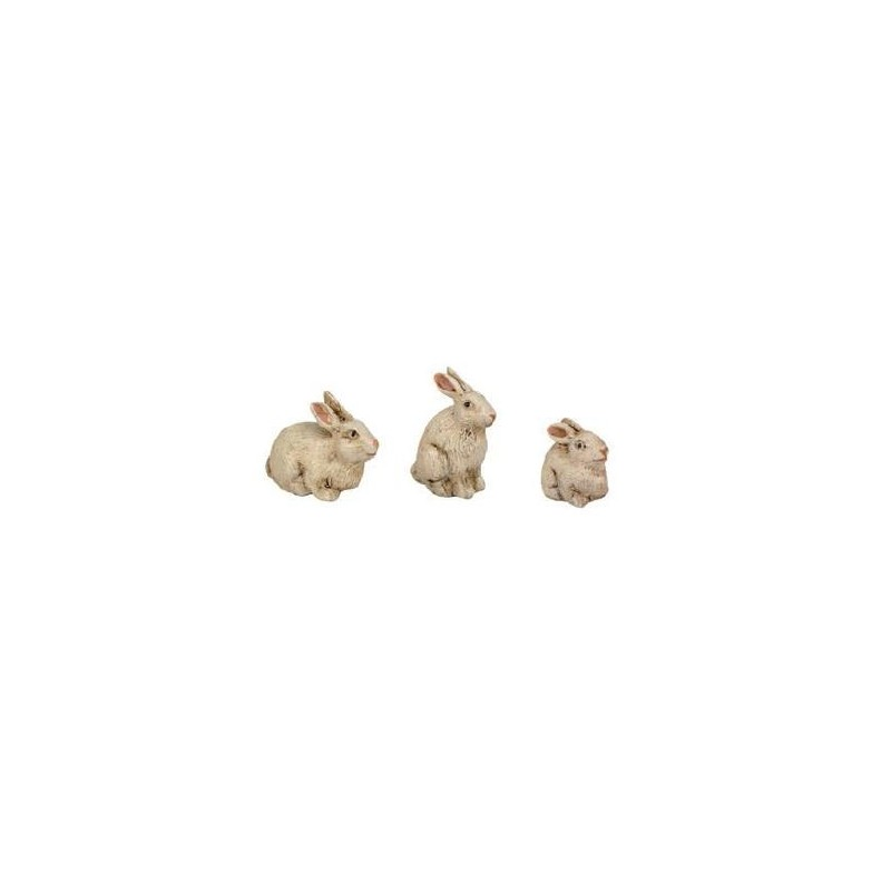 Conejo durexina