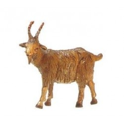 Cabra patina