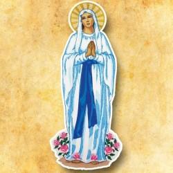 Aplicación Virgen de Lourdes
