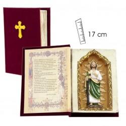 San Judas Tadeo en libro