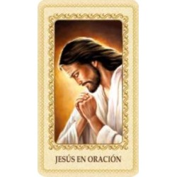 Estampa Jesús en oración