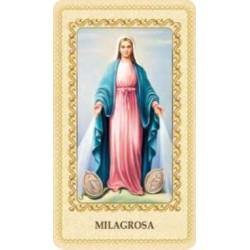 Estampa Virgen Milagrosa