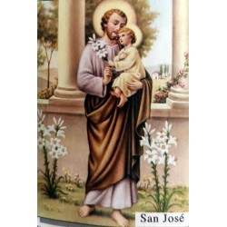Postal de San José